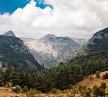 زيارة المحميات الطبيعية في اليوم الوطني للبيئة