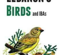 جمعية حماية الطبيعة تصدر كتاب عن أوضاع الطيور في لبنان