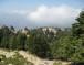 الحماية السياسية هي عامل أساسي في المحافظة على المحميات الطبيعية في لبنان