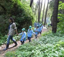 كشاف البيئة يطلق برنامج التثقيف البيئي للأشبال