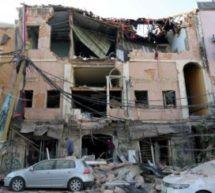 دعوة للاستجابة الطارئة لمنظمات المجتمع المدني البيئية في بيروت المتضررة من كارثة 4 آب 2020