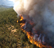 Forest fire surges in north Lebanon and helicopters from Cyprus