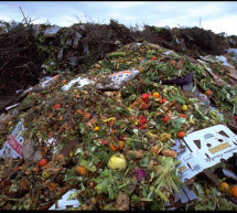 FAO: Food Waste harms all natural resources